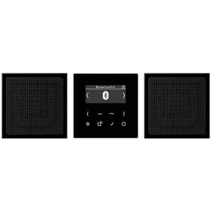 Jung DABLS2BTSW DAB+ mit Bluetooth-Set,